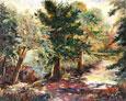 Consuelo Gamboa - Forest Path